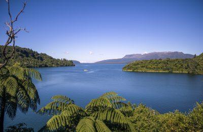 Eco-Tourism in Rotorua and New Zealand