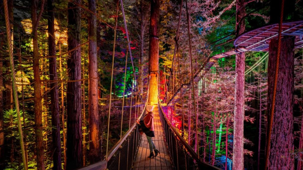 Lady on Redwoods platform enjoying the view by night